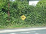 3.1206999120.funny-signs