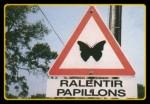 panneau papillon2