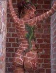 Sexy Naked Woman Illusion